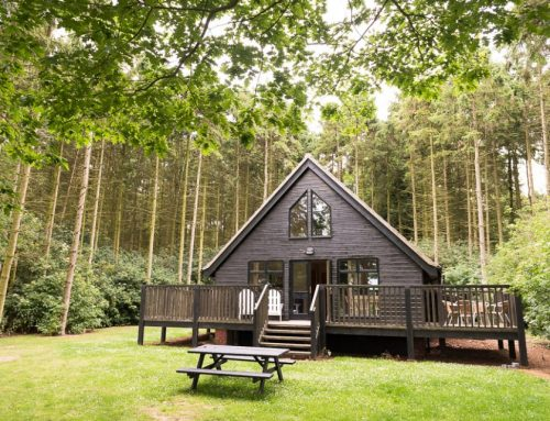 Cottages and Lodges- Christmas and New Year