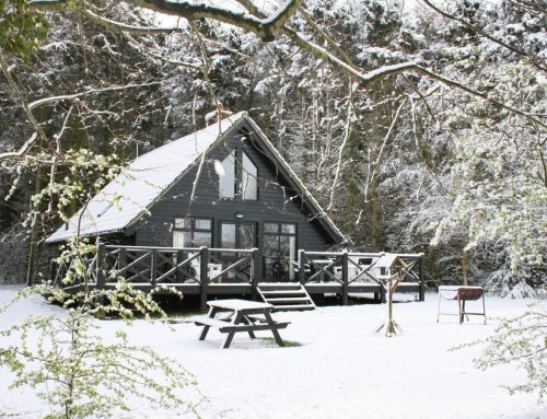 10 Things to do while staying at Clippesby Hall this winter.