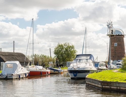 The Broads has been shortlisted by the BBC's Countryfile Magazine for a National Park of the Year Award – please add your vote